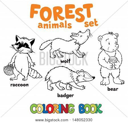 Coloring book set of funny racoon, wolf, bagger and bear. Children vector illustration.Forest animals