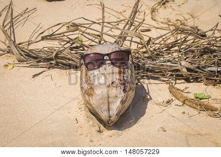 Coconut in glasses lying on the sand. Beach.