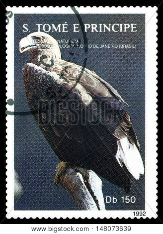 STAVROPOL RUSSIA - SEPTEMBER 18.2016: A stamp printed in Sao Tome and Principe shows Eagle series Greenpeace circa 1992