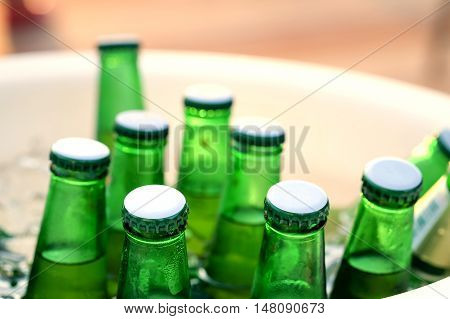 Green beer bottles are chilled in an ice bucket.