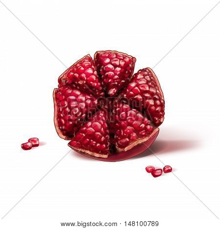 Pomegranate half with seeds on white background. Rosh Hashana Jewish New Year symbol. Watercolor illustration. Pomegranate fruit card. Pomegranate tree, pomegranate juice, fruit. Shana Tova. Pomegranate, Shofar, Yom Kippur, Sukkot, Jewish new year, Jewish