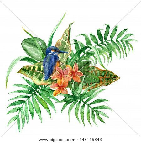 Raster colorful set of a tiny blue colibri on a green leaf background. Illustration for special books and maps children goods fairy and fantastic themes. Design element. Tropical image.