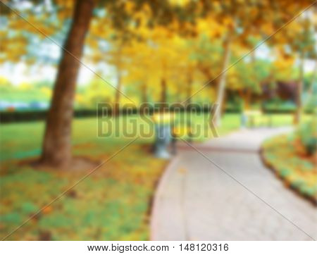 Abstract natural background of grass. Autumn in the park. Daytime. Color Spicy Mustard.