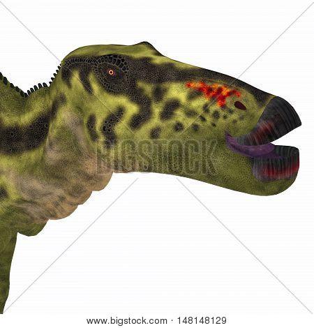 Shantungosaurus Dinosaur Head 3D Illustration - Shantungosaurus was a herbivorous Hadrosaur dinosaur that lived in China in the Cretaceous Period.