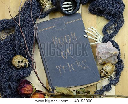 Halloween image of overhead perspective of an old book surrounded by artifacts like skulls dead flowers minerals twigs and skeleton hands. Book of Tricks text added