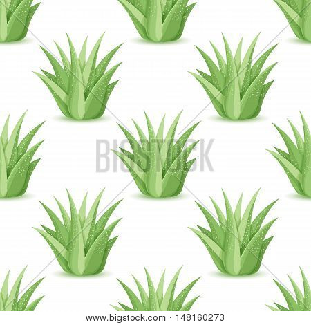 Agave - seamless pattern with desert plants. Nature floral background with green succulent leaf. Wallpaper with plantation of aloe. Vector illustration