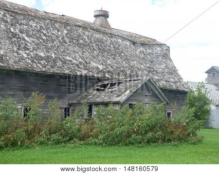 An old abandoned barn with attached milk house,  the barn may of been used for dairy cattle.