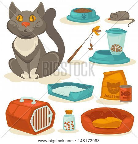 Cat accessories set. Pet supplies: food, toys, mouse, bowl and box, toilet and equipment for grooming. Cartoon style. Vector illustration isolated on white background.