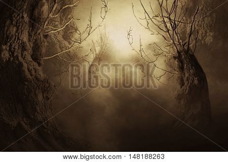 Spooky Tree In Night Mist