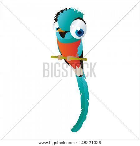 vector funny image of cute bright color animal. Birds. Quetzal