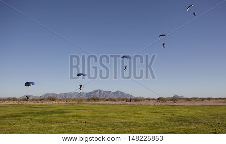 Compilation of Skydivers approaching for landing with a blue sky