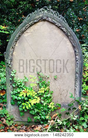 Blank tombstone grave of a recent funeral burial in an old cemetery with copy space for Halloween gravestone horror death backgrounds