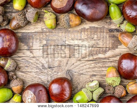 Framework arranged from chestnuts and acorns on wooden plank