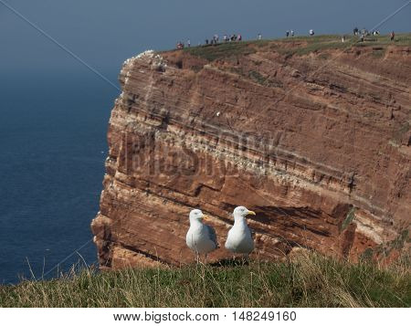 the Island of Helgoland in the North sea