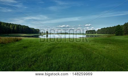 landscape summer lake on the background of forest and blue sky