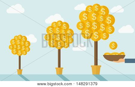 Three steps in growing a money dollar plant from small to bigger plant in a pot. Financial growth concept.  A contemporary style with pastel palette soft blue tinted background with desaturated clouds