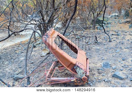 Charcoaled landscape including burnt plants and a burnt chair taken after a wildfire in Southern California