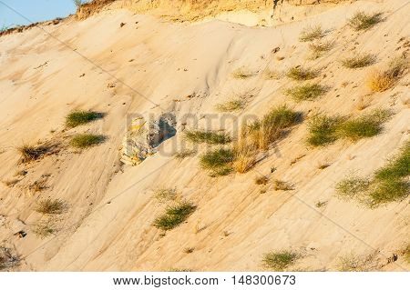 Geological Cut Of Sands.
