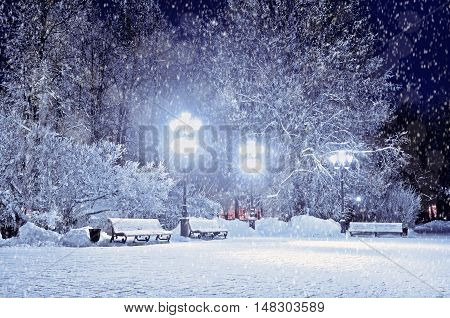 Winter night. Winter landscape- winter evening in the night snowy park with lonely benches under winter snowfall. Night winter park landscape. Winter park under falling snow -winter view in cold tones