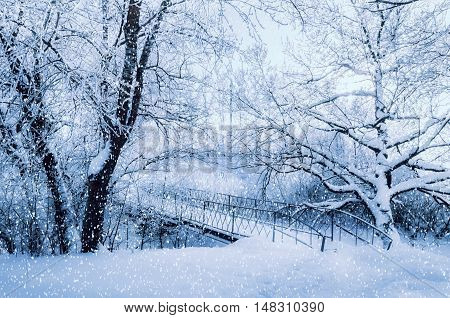 Winter landscape in cold tones - frosted winter trees and old metal snowy bridge in the winter forest in cloudy cold winter weather. Winter nature view with snowy winter trees and winter snowfall.