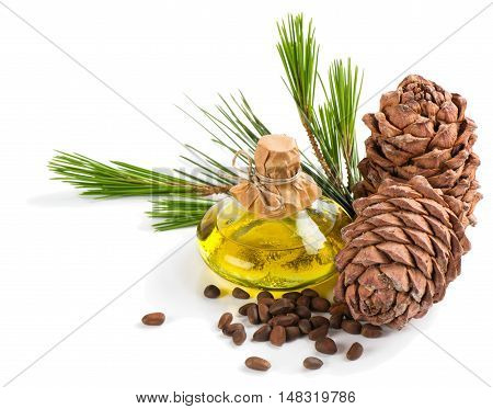 Cold pressed extra virgin cedar oil in bottle with nuts cones and branch of cedar isolated on white background.