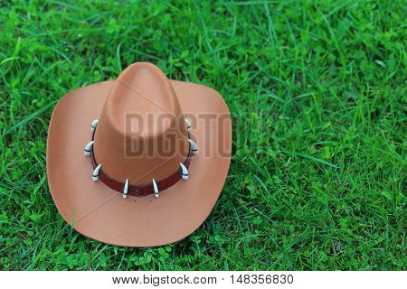 Top View Of Brown Stetson