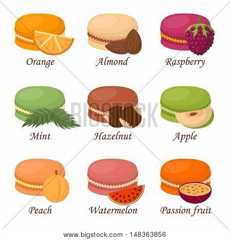 Sweet and colourful french macaroon cake on white background. Dessert fruit macaroon and sweet cake. Pasty traditional sweet macaroon biscuit dessert france delicious.