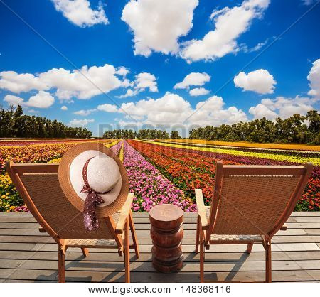 Wooden chaise lounges in the meadow with flowers. An elegant straw women's hat on a back a chaise lounge. Concept of ecological tourism. Rural rest