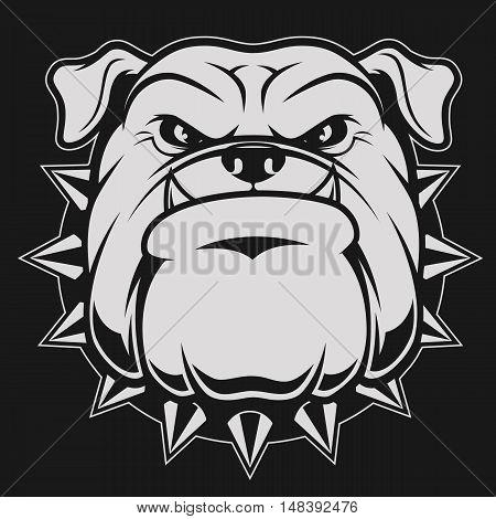 Vector illustration head ferocious bulldog mascot on a black background