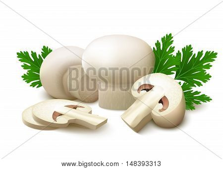 Whole white champignons, half of champignon, two slices of champignon and green parsley leaves with shadows isolated on white background. Vector illustration.