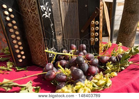 Detail of an old accordion with a bunch of red grapes in Trentino Alto Adige Italy Europe