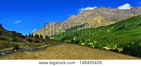panoramic view on alpien rocks mountains with hayfield