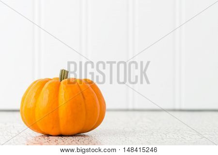 Single ripe pumpkin against a white background with plenty of copy space.