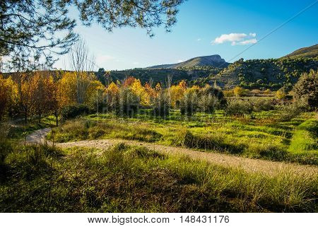 Autumn landscape with colorful leaves, river and reflections in water in Caravaca de la Crus, Spain