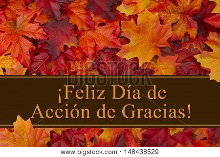Happy Thanksgiving Greeting in Spanish Some fall leaves with text Feliz Dia de Accion de Gracias