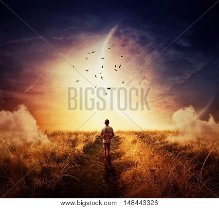 Boy walking on a cpathway with a relax mood following a group of birds on the space horizon. Way of life concept
