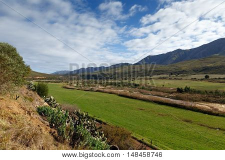 Green Landscape in Kareedouw - Landscape in the Klein Karoo in South Africa.