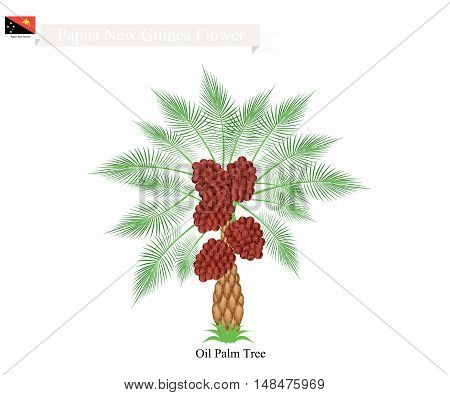 Papua New Guinea Tree Illustration of Coconut Tree. The Native Tree of Papua New Guinea.
