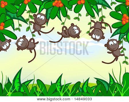 Funny-monkey