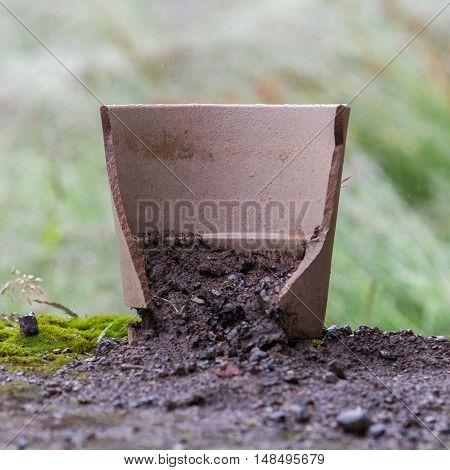 Broken Flower Pot