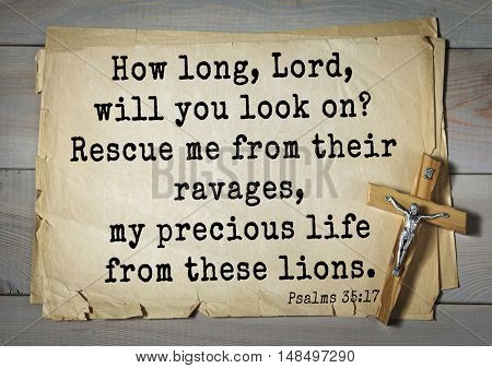 TOP-1000.  Bible verses from Psalms. How long, Lord, will you look on? Rescue me from their ravages, my precious life from these lions.
