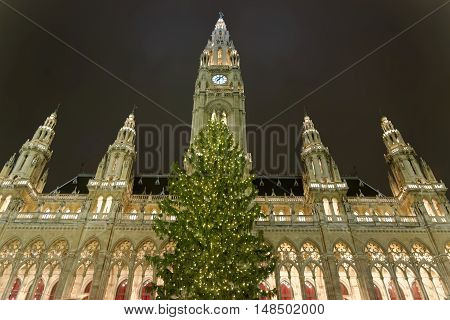 Beautiful view of the Vienna City hall Rathaus with Christmas tree in the evening Vienna Austria