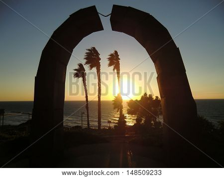 Palm trees and sunset on the Mediterranean sea in Netanya(Israel).