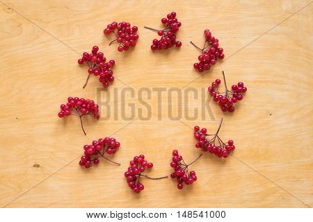Red berries of viburnum placed in a circle on a wooden background.