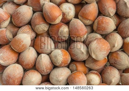 Stack of hazelnuts. Hazelnut background. Healthy eating vegetarian nut food hazelnut.