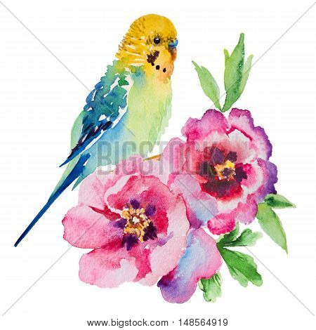 watercolor picture of budgie with flowers on a white background