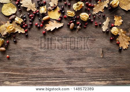 Autumn background: wood with oak leaves and acorns - space for text