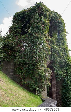 red brick archway in public park with ivy