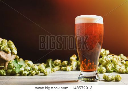 Glass of beer with hops in the background - plenty of copy space for text
