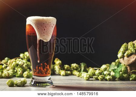 Frothy beer with hops in the background - plenty of copy space for text